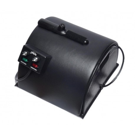 Anal sybian video